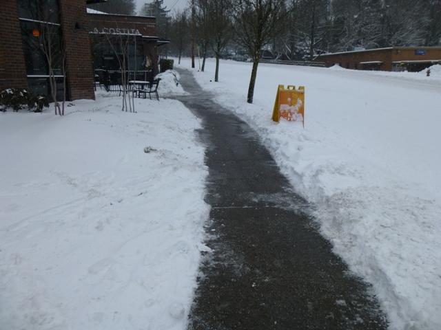 2014 1 9 Snow Scenes (9)Barbur Shops did a good job