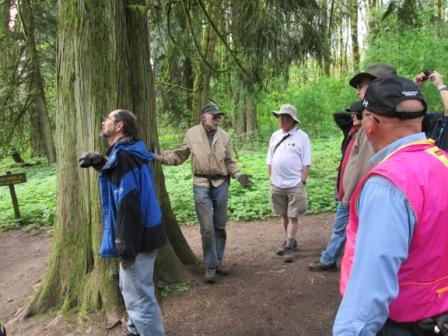Phil Hamilton, just to right of tree, is telling group about owl in the tree.