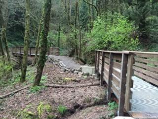 Marquam Nature Park trail