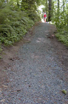 Finished trail newly covered with gravel.