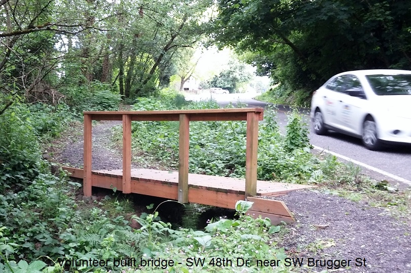 volunteer built bridge in Woods Park