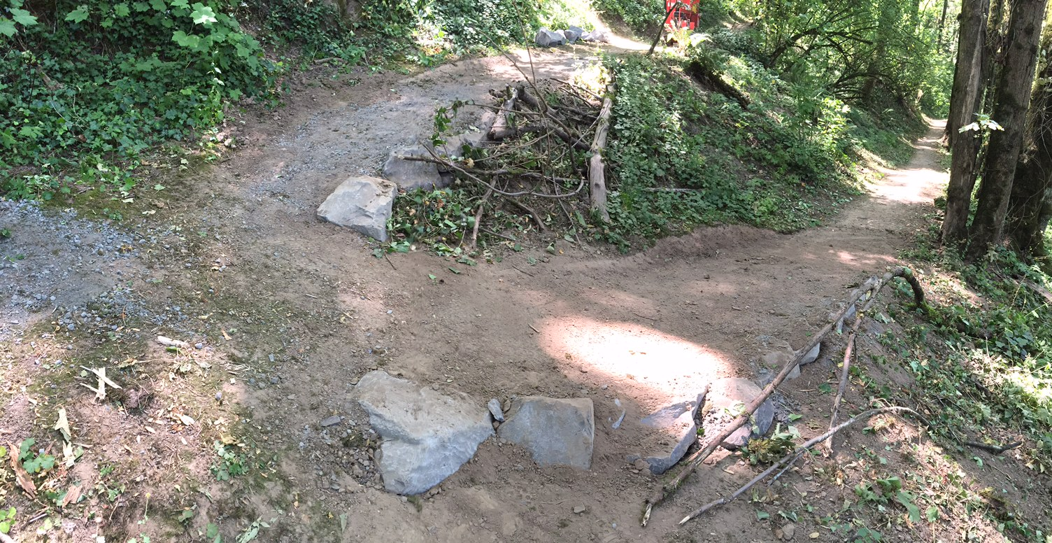 On July 2 SW Trails worked with Portland Parks to make a steep switchback into a less steep switchback.