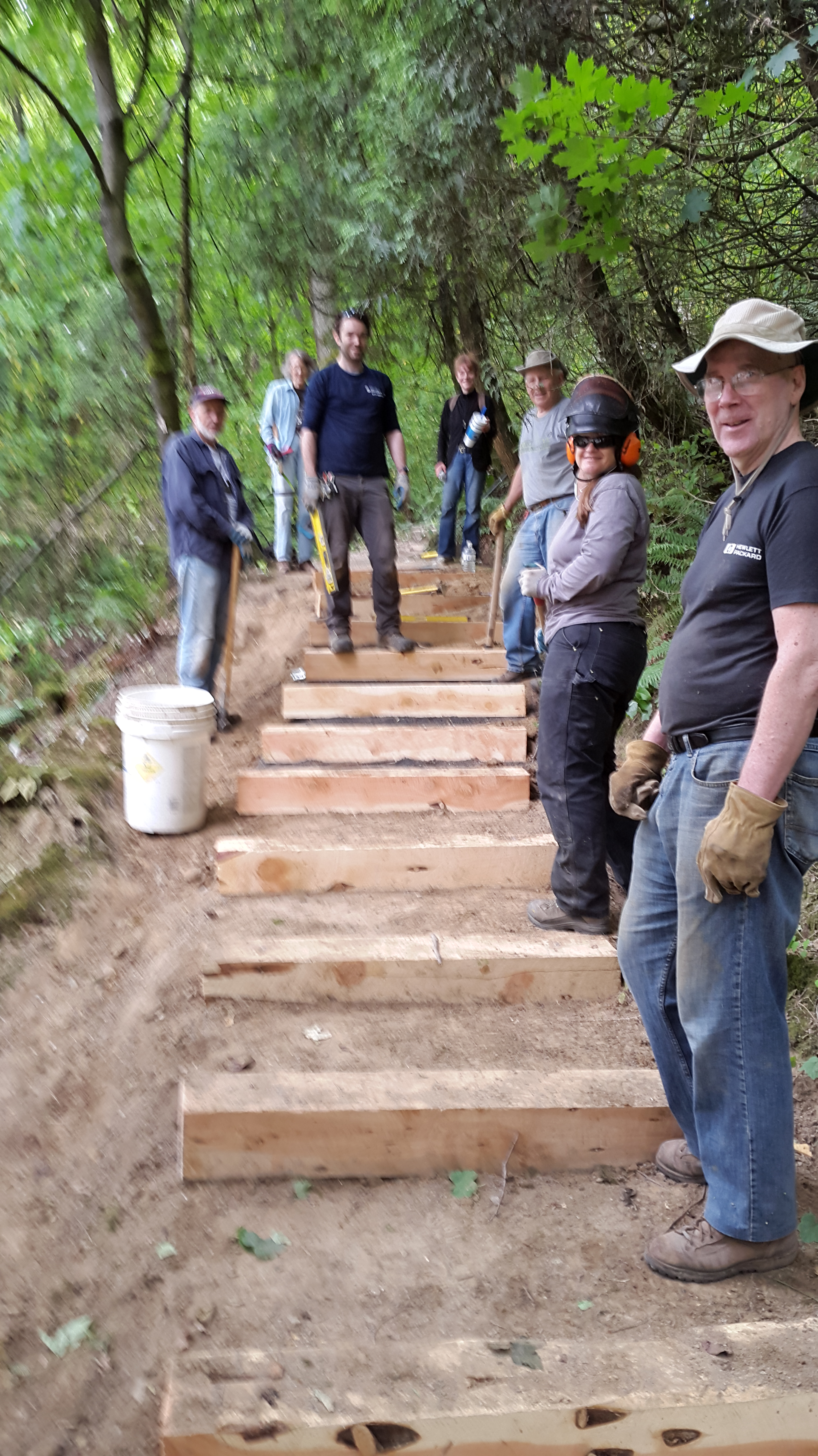 Work party of July 2016 replaced steps on the 4T Trail and cut back brush from the trail.