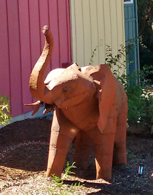 elephant-1a