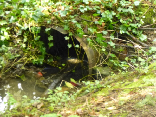 2014_4_4_culvert_needs_to_be_replace623f72