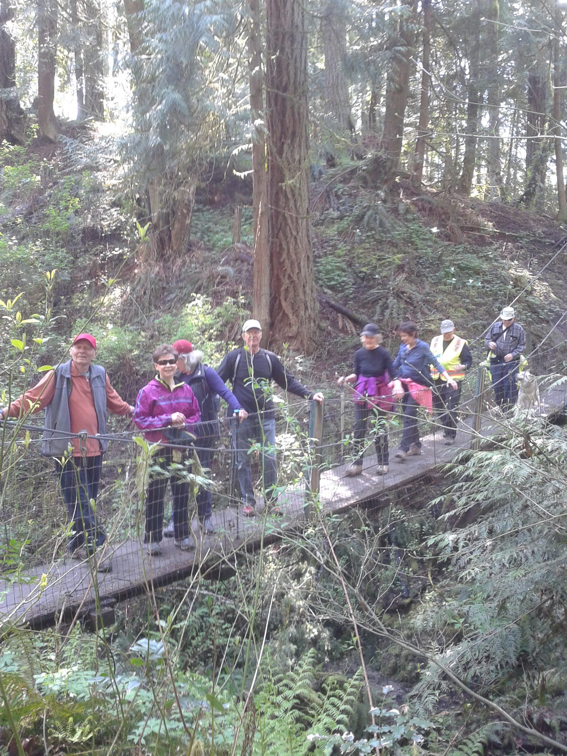 On the April 2017 SW Trails hike we crossed the Tom Riley in Tyron Creek Park.